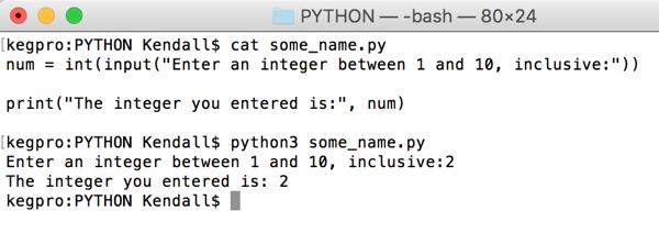 running a python script