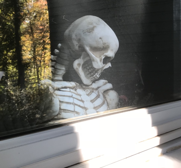 skeleton_window